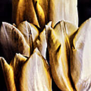 My Favorite Tulips Art Print