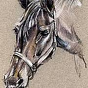 My Horse Portrait Drawing Art Print