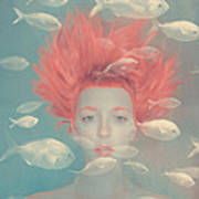 My Imaginary Fishes Art Print
