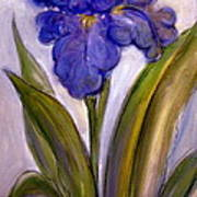 My Iris Art Print