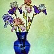 My Iris Vincent's Genius Art Print