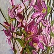 My Magnolias Bliss Art Print