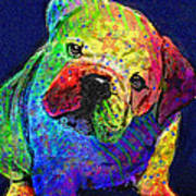 My Psychedelic Bulldog Art Print