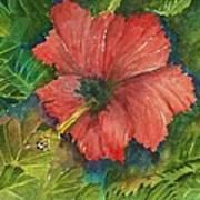 My Quiet Place-hibuscus Flower Art Print