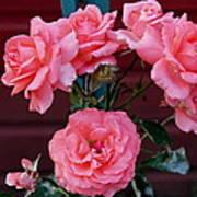My Rose Garden Art Print by Victoria Sheldon