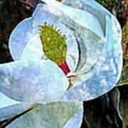 My Sweet Magnolia Art Print