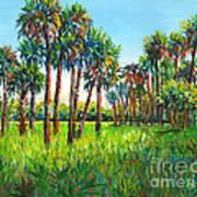 Myakka Palms Art Print