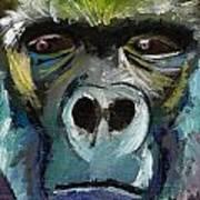 Mysterious Gorilla  Art Print