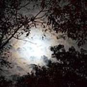 Mystery Of Moonlight Art Print