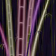 Mystic Bamboo Art Print