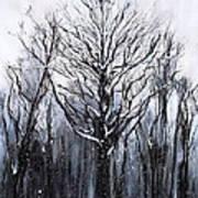 Mystic Winter Art Print