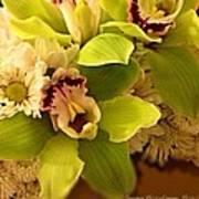 Mystical Orchid  Art Print