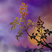 Nandina The Beautiful Print by Bedros Awak