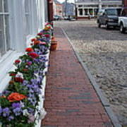 Nantucket Street Scene Art Print