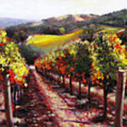 Napa Hill Side Vineyard Art Print