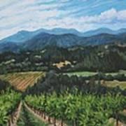 Napa Valley Vineyard Art Print