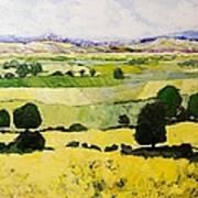 Napa Yellow2 Art Print