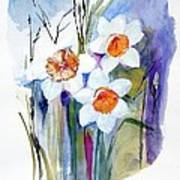 Narcissi Art Print