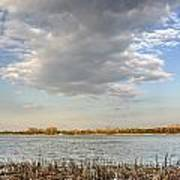 Narew River Near Serock In The Vicinity Of Warsaw Art Print
