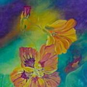 Nasturtium Dream Art Print