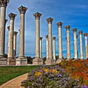 National Capitol Columns Art Print