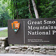 National Park Art Print
