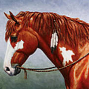 Native American Pinto Horse Art Print by Crista Forest