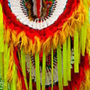 Native American Yellow Feathers Ceremonial Piece Art Print