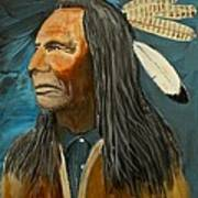 Native Land Art Print