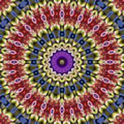 Natural Attributes 14 Square Art Print