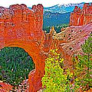Natural Bridge In Bryce Canyon National Park-utah  Art Print