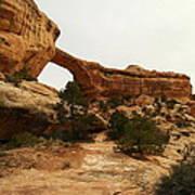 Natural Bridge Southern Utah Art Print by Jeff Swan
