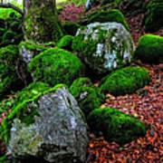 Natural Emeralds. Wicklow. Ireland Art Print