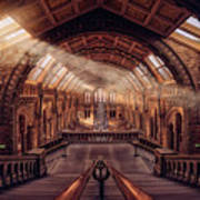 Natural History Museum - London Art Print