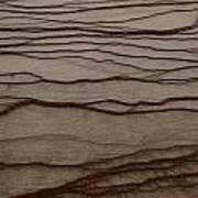 Natural Patterns Art Print