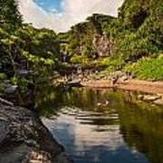 Natural Pool - The Beautiful Scene Of The Seven Sacred Pools Of Maui. Art Print