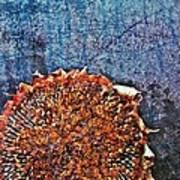 Nature Abstract 47 Art Print