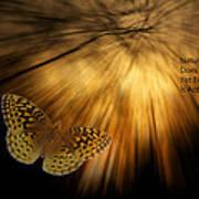 Nature Does Not Hurry Follow The Light Art Print