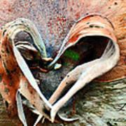 Nature Has A Heart  Art Print