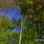 Nature Reflecting Art Print