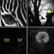 Nature Squares - Collage Art Print