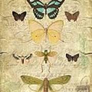 Nature Study-no.1 Art Print
