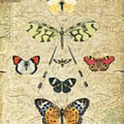 Nature Study-no.2 Art Print