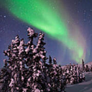 Nature's Canvas In The Northern Sky Print by Mike Berenson