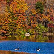 Natures Colorful Autumn Art Print