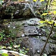 Nature's Mossy Boulders Art Print