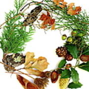 Nature's Natural Green Wreath Art Print