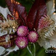 Nature's Ornament Art Print
