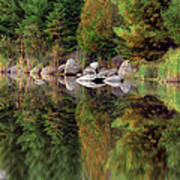 Natures Reflection Art Print by Mark Papke