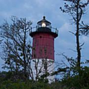 Nauset Lighthouse Amid The Scrub Pines Art Print